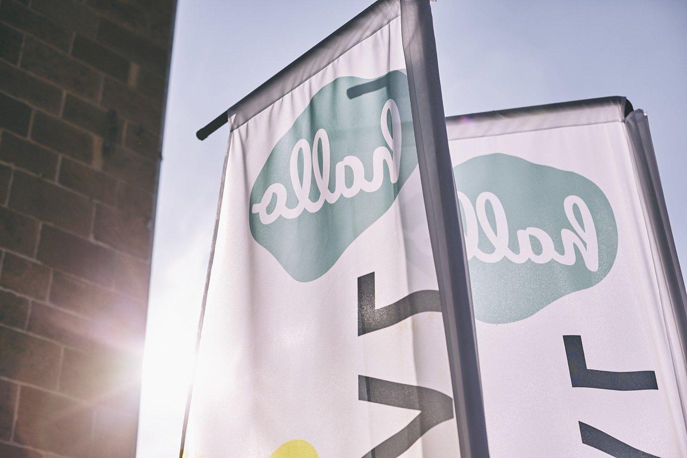 hallo.digital Flaggen vor dem Substage im Sonnenlicht